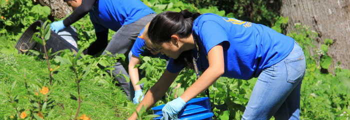 volunteer-clearing-fields-e1399922811959-700x240